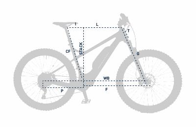 Wildcat Bike
