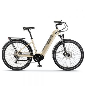 Ebike Iridium Silver Wayfarer M7 Mid-drive step-through